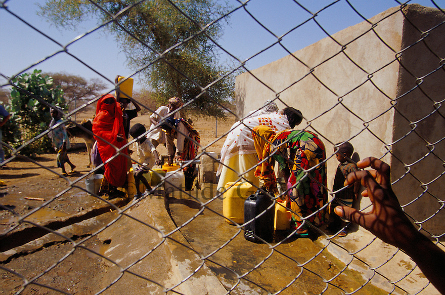 Eritrea - Gash Barka - Women collecting water at the nearest well from their village, 3 hours walk. As a result of 30 years of war for independence against Ethiopia (from 1961 to 1991) and another 3 years from 1997 to 2000, there are 50,000 Eritreans currently living in internally displaced (IDP) camps throughout the country. These IDPs have fled three times in the last 10 years, each time because of renewed military conflict. They lived in relatives' homes when lucky enough, but mostly, the fled to the mountains, where they attempted to do what Eritreans do best, survive. Currently there is no Ethiopian occupation in Eritrea, but landmines prevent the IDPs from finally going home. .It is estimated that every Eritrean family lost two or three members to the war which makes the reality of the current emergency situation even more painful for Eritreans worldwide. Currently, the male population has been decreased dramatically, affecting the most fundamental socio-economic systems in the country. Among the refugee population, an overwhelming majority of families are female-headed, severely affecting agricultural production. For, IDPs in particular, 80% of households are female-headed..The unresolved border dispute with Ethiopia remains the most important drawback to Eritrea's socio-economic development, as national resources (human and material) continue to be prioritized for national defense. Eritrea is vulnerable to recurrent droughts and variable weather conditions with potentially negative effects on the 80 percent of the population that depend on agriculture and pastoralism as main sources of livelihood. The situation has been exacerbated by the unresolved border dispute, resulting in economic stagnation, lack of food security and increased susceptibility of the population to various ailments including communicable diseases and malnutrition. .