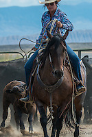 Cowboy and Cowgirl roping,riding and branding in Wyoming. Cowboy and Cowgirl photographs of western ranches working with horses and cattle by western cowboy photographer Jess Lee. Photographing ranches big and small in Wyoming,Montana,Idaho,Oregon,Colorado,Nevada,Arizona,Utah,New Mexico.