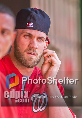 22 August 2015: Washington Nationals outfielder Bryce Harper sits in the dugout prior to a game against the Milwaukee Brewers at Nationals Park in Washington, DC. The Nationals defeated the Brewers 6-1 in the second game of their 3-game weekend series. Mandatory Credit: Ed Wolfstein Photo *** RAW (NEF) Image File Available ***