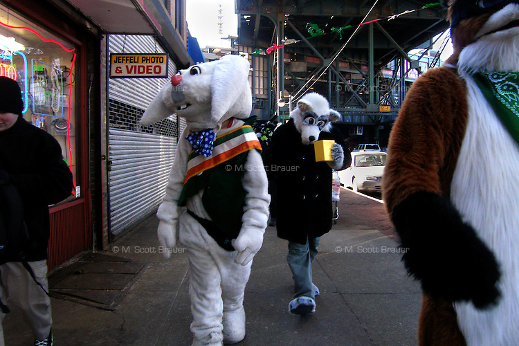 Rapid T. Rabbit, FreakyLynx (rear), and Foxwell Foxcoon walk down a street in Woodside, Queens, New York, after marching in the St. Patrick's for All Parade.   Furries are a group of people who identify themselves not as being human but as a walking, talking animal.  For some the lifestyle is complete, animal traits reach into every aspect of life from mundane trips to a grocery store to sexual fantasies.  For others, involvement in the furry fandom is limited to public performances and meet-and-greets.  .