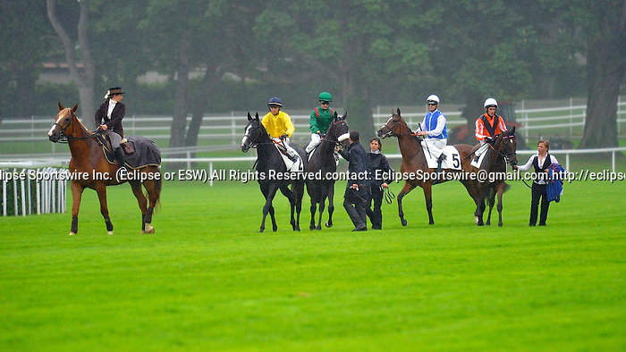 Meandre (no. 2), ridden by Maxime Guyon and trained by Andre Fabre, wins the  group 1 Grand Prix de Saint-Cloud Stakes for four years old and upward on June 24, 2012 at Saint-Cloud Racecourse in Saint-Cloud, France.  (Bob Mayberger/Eclipse Sportswire)