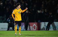 Wolverhampton Wanderers U21's Pedro Goncalves celebrates his penalty<br /> <br /> Photographer Chris Vaughan/CameraSport<br /> <br /> The EFL Checkatrade Trophy Northern Group H - Lincoln City v Wolverhampton Wanderers U21 - Tuesday 6th November 2018 - Sincil Bank - Lincoln<br />  <br /> World Copyright © 2018 CameraSport. All rights reserved. 43 Linden Ave. Countesthorpe. Leicester. England. LE8 5PG - Tel: +44 (0) 116 277 4147 - admin@camerasport.com - www.camerasport.com