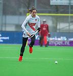 AMSTELVEEN -  Felice Albers (A'dam) )  tijdens de hoofdklasse competitiewedstrijd dames, Pinoke-Amsterdam (3-4). COPYRIGHT KOEN SUYK