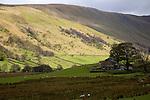 Martindale valley, Ullswater, Lake District national park, Cumbria, England, UK