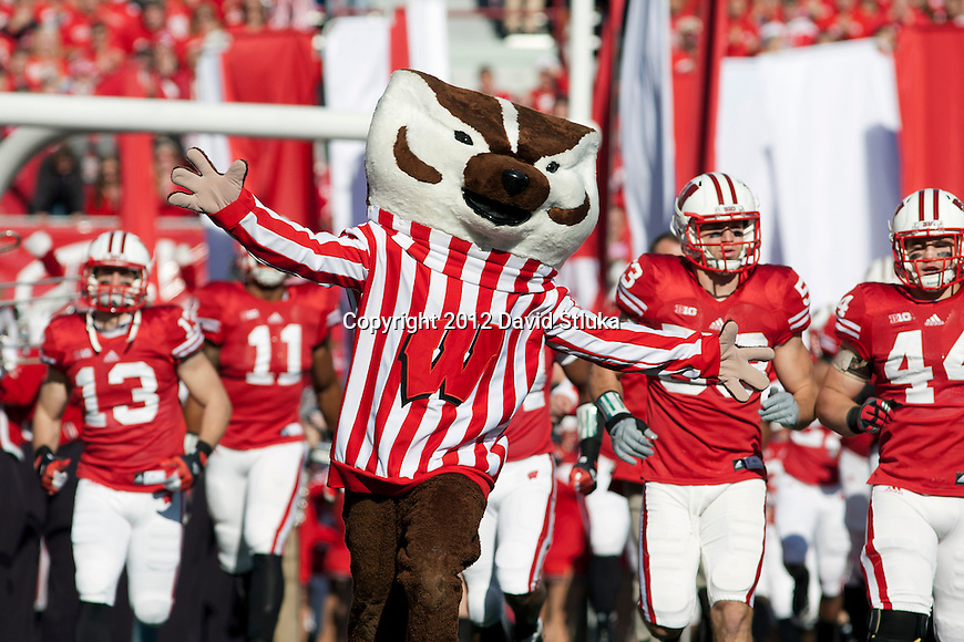 Wisconsin Badgers mascot Bucky Badger leads the team onto the field prior to an NCAA Big Ten Conference College Football game against the Michigan State Spartans Saturday, October 27, 2012 in Madison, Wis. The Spartans won 16-13. (Photo by David Stluka)