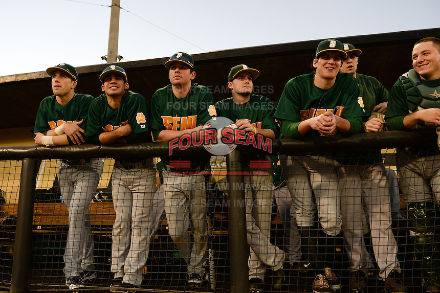 Siena Saints players in the dugout before the opening game of the season against the UCF Knights on February 13, 2015 at Jay Bergman Field in Orlando, Florida.  UCF defeated Siena 4-1.  (Mike Janes/Four Seam Images)