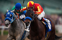 Drill, with jockey Martin Garcia aboard wins the 2012 San Vicente Stakes at Santa Anita Park in Arcadia California on February 18, 2012.