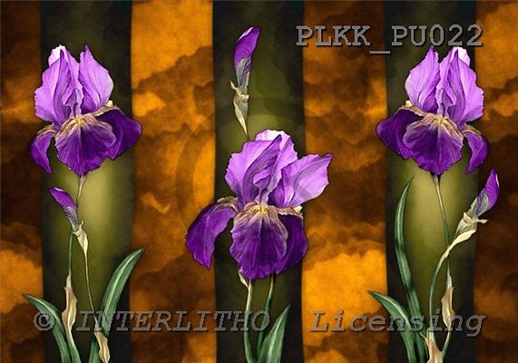Kris, FLOWERS, paintings, PLKKPU022,#f# Blumen, flores, illustrations, pinturas ,everyday