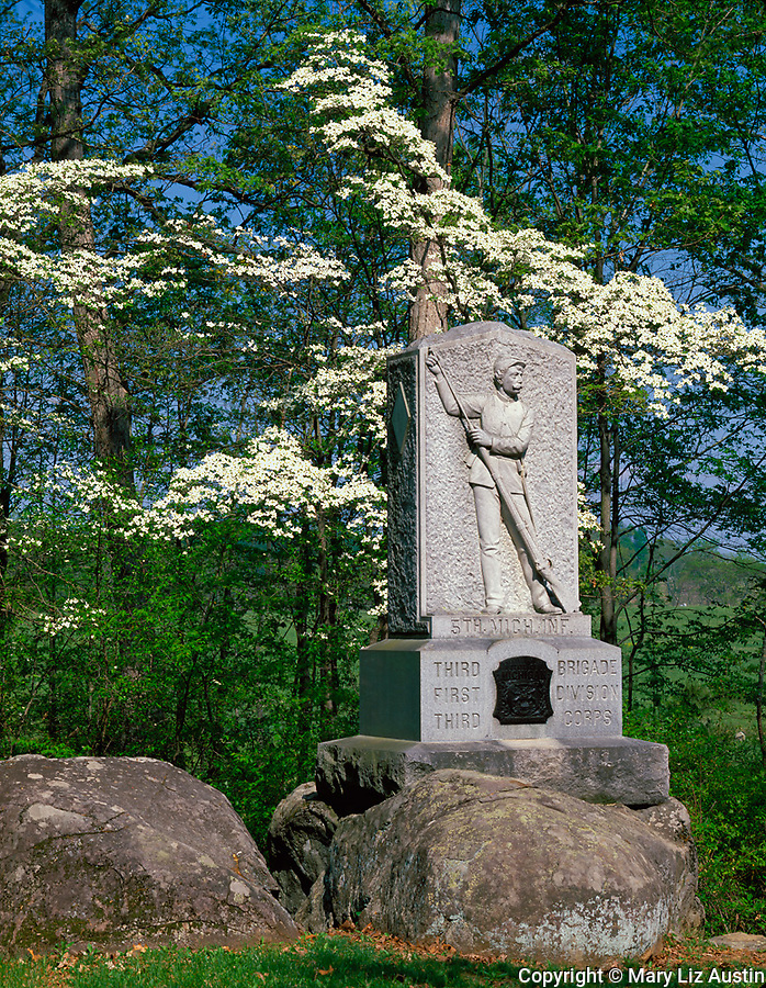 Gettysburg National Military Park, PA<br /> Flowering dogwood trees encircle the Fifth Michigan Infrantry Monument
