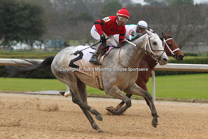 February 17, 2020: Jockey Ricardo Santana Jr. aboard Silver Prospector (2) celebrating as he approaches the finish line, winning the Southwest Stakes at Oaklawn Racing Casino Resort in Hot Springs, Arkansas on February 17, 2020. Justin Manning/Eclipse Sportswire/CSM