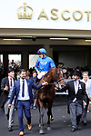 June 22, 2019, Ascot, UNITED KINGDOM - Blue Point with James Doyle up after winning The Diamond Jubilee Stakes (Gr 1) at Ascot Race Course  [Copyright (c) Sandra Scherning/Eclipse Sportswire)]