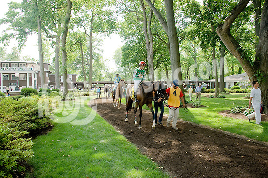 True Feelings before The Walking in Da Sun Stakes at Delaware Park on 7/11/12