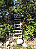 Ladder up to Upper Negro island, Castine, Maine, US