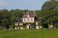 vineyard clos des langres ardhuy nuits-st-georges cote de nuits burgundy france