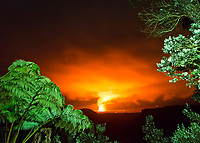 Halema'uma'u Crater at night, with hapu'u ferns in the foreground, seen from Kilauea Iki Lookout in Hawai'i Volcanoes National Park, Hawai'i Island, July 2017.
