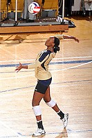 11 September 2011:  FIU setter Renele Forde (14) serves in the second set as the FIU Golden Panthers defeated the Florida A&M University Rattlers, 3-0 (25-10, 25-23, 26-24), at U.S Century Bank Arena in Miami, Florida.