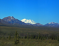 Mt McKinley, or Denali, as seen from mile 9 on Denali park road in June