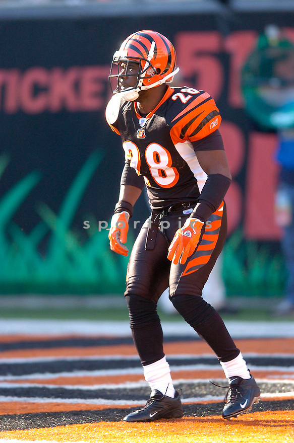 DEXTER JACKSON, of the Cincinnati Bengals in action against the Atlanta Falcons on October 29, 2006 in Cincinnati, OH...Falcons win 29-27..Chris Bernacchi/ SportPics