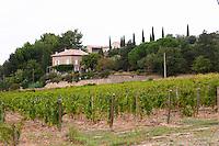 vineyard domaine de longue toque gigondas rhone france