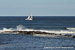 Ogunquit Sailing