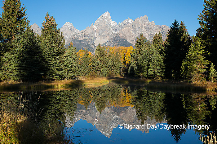 67545-09507 Sunrise at Schwabacher Landing in fall, Grand Teton National Park, WY