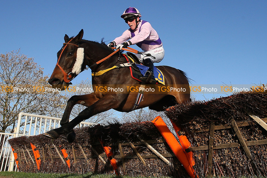 White Diamond ridden by Harry Haynes in jumping action during the Wensum Handicap Hurdle at Fakenham Racecourse, Norfolk - 12/12/11 - MANDATORY CREDIT: Gavin Ellis/TGSPHOTO - Self billing applies where appropriate - 0845 094 6026 - contact@tgsphoto.co.uk - NO UNPAID USE.