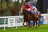 Poseidon ridden by Liam Keniry and trained by Ed Walker wins The Bathwickcarandvanhire.co.uk Handicap during Bathwick Tyres Reduced Admission Race Day at Salisbury Racecourse on 9th October 2017