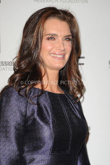WWW.ACEPIXS.COM . . . . . ....November 16 2009, New York city....Actress Brooke Shields at the 'Hope for Depression Research Foundation Seminar' at the Time Warner Center on November 16, 2009 in New York City.....Please byline: KRISTIN CALLAHAN - ACEPIXS.COM.. . . . . . ..Ace Pictures, Inc:  ..tel: (212) 243 8787 or (646) 769 0430..e-mail: info@acepixs.com..web: http://www.acepixs.com