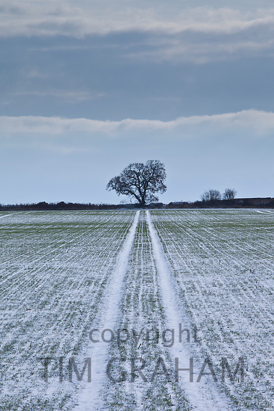 Road to nowhere snow scene in The Cotswolds, UK