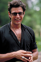 Jurassic Park (1993)<br /> Jeff Goldblum as Dr. Ian Malcolm  <br /> *Filmstill - Editorial Use Only*<br /> CAP/KFS<br /> Image supplied by Capital Pictures