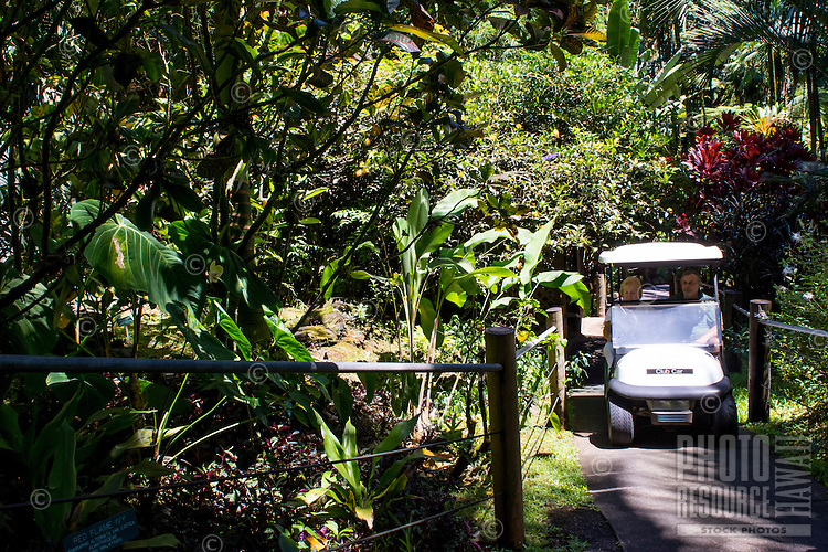 A tourist gets a ride via golf cart at the Hawaii Tropical Botanical Garden in Papa'ikou north of Hilo, Big Island of Hawaiʻi.