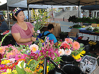 NWA Democrat-Gazette/FLIP PUTTHOFF<br /> MARKET FLOWERS<br /> Pa Lao (cq) arranges flowers at her family's booth Saturday August 8 2015 at the Bentonville Farmers Market in downtown Bentonville. The market was busy early with customers trying to beat the heat. Flowers, produce, fresh prepared food and arts and crafts are available at the market.