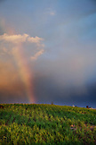 MAURITIUS, sugar cane fields and a rainbow on a drive throught the interior of the island