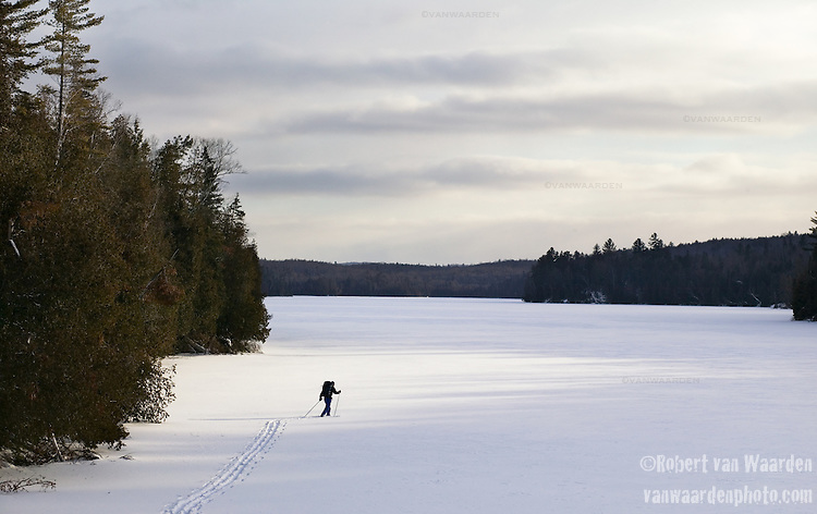 A lone skier makes his away across a frozen lake in Papineau Labelle Reserve, Quebec, Canada.