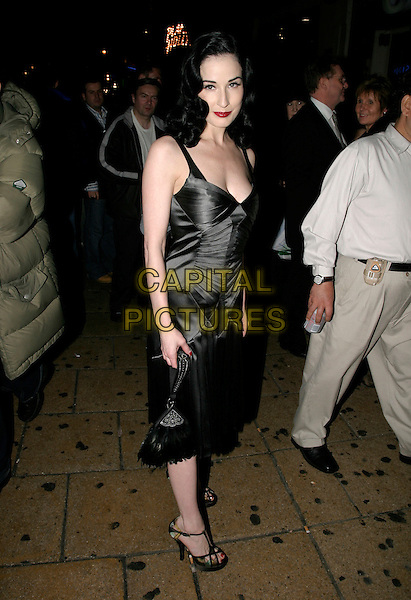 DITA VON TEESE.Cafe De Paris - 80th birthday party, W1, London, UK..October 26th, 2005.Ref: AH.full length grey gray silver metallic dress plunging neckline.www.capitalpictures.com.sales@capitalpictures.com.© Capital Pictures.