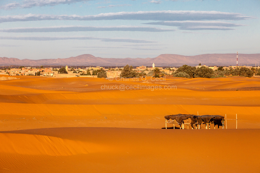 Merzouga, Morocco.  Sand Dunes, Sun Shelter in Foreground.