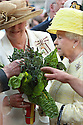 Britain's Queen Elizabeth II is present by a Rainbow Chard as she tours St.Georges Market in Belfast, Tuesday June 24th, 2014. The Queen is on a 3 day tour of Northern Ireland. Photo/Paul McErlane