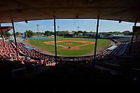 General view of a Dartmouth Big Green game against the Bradley Braves on March 21, 2019 at Chain of Lakes Stadium in Winter Haven, Florida.  Bradley defeated Dartmouth 6-3.  (Mike Janes/Four Seam Images)