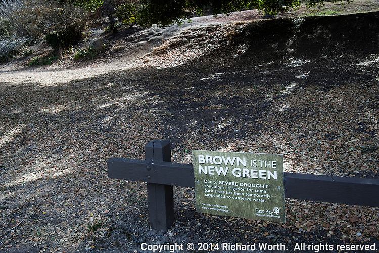 A sign at Coyote Hills Regional Park:  Brown is the New Green.  Due to severe drought conditions, irrigation for some park areas has been temporarily suspended to conserve water.