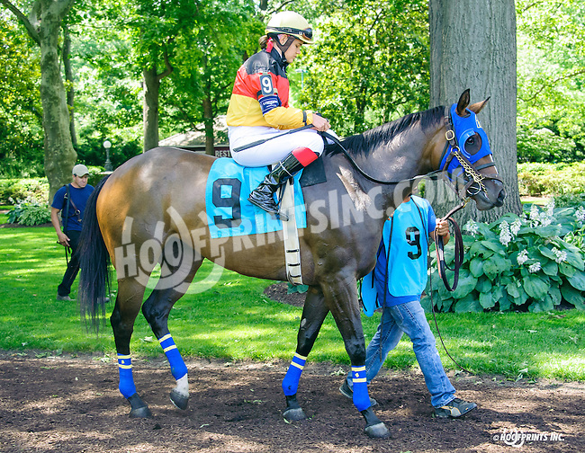 Dulce Vida in The International Ladies FEGENTRI  race at Delaware Park on 6/13/16