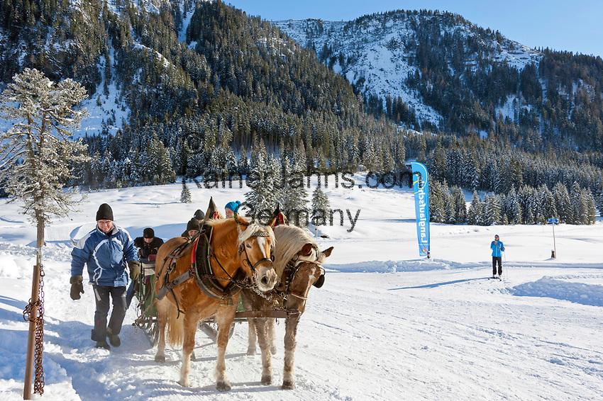 Oesterreich, Salzburger Land, Pongau, bei Obertauern: Pferdeschlittenfahrt im Skilanglaufgebiet rund um die Gnadenalm | Austria, Salzburger Land, Pongau, near Obertauern: sleigh ride through cross-country ski area at Gnadenalm