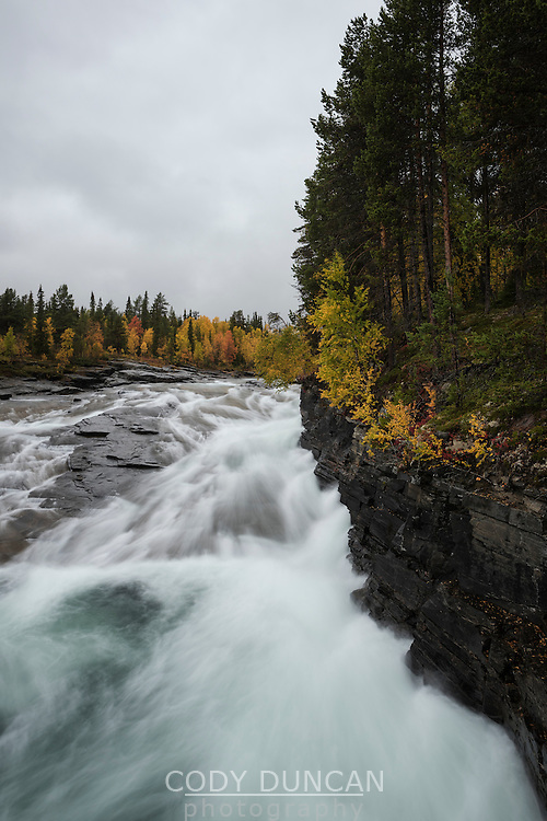 Vindelälven river flowing through autumn landscape near Ammarnäs, Lapland, Sweden