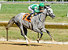 Battle Hard winning at Delaware Park on 7/25/12