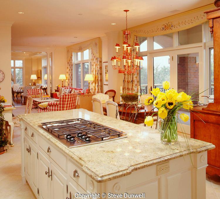 Kitchen at Longyear, Brookline, MA