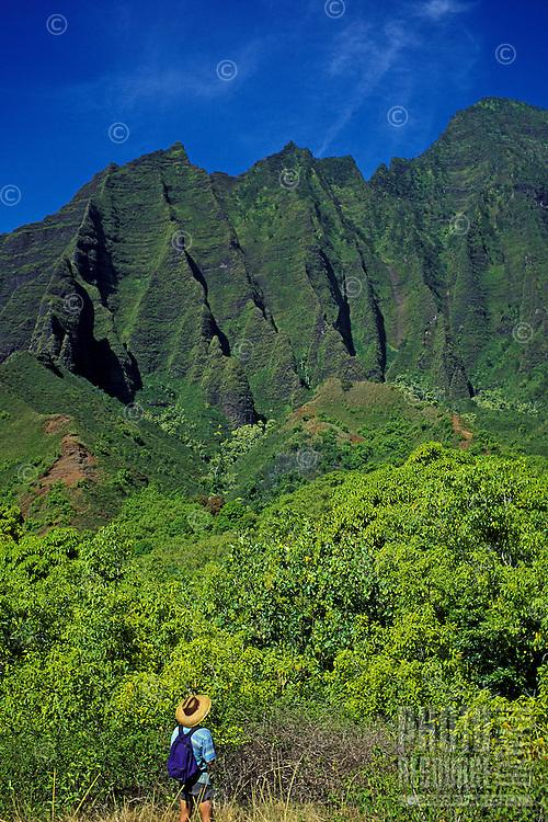 Hiker looks out at the jagged cliffs in Kalalau Valley, Na Pali Coast, Kauai