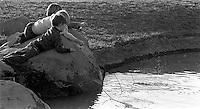 Kids playing in San Ramon City Center Park, 1987.   &#xA;<br />