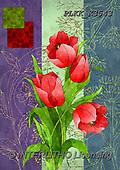 Kris, FLOWERS, BLUMEN, FLORES, paintings+++++,PLKKK3543,#f#, EVERYDAY