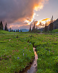 Mount Rainier National Park, WA: Small stream reflects the color of sunset from Upper Tipsoo Lake