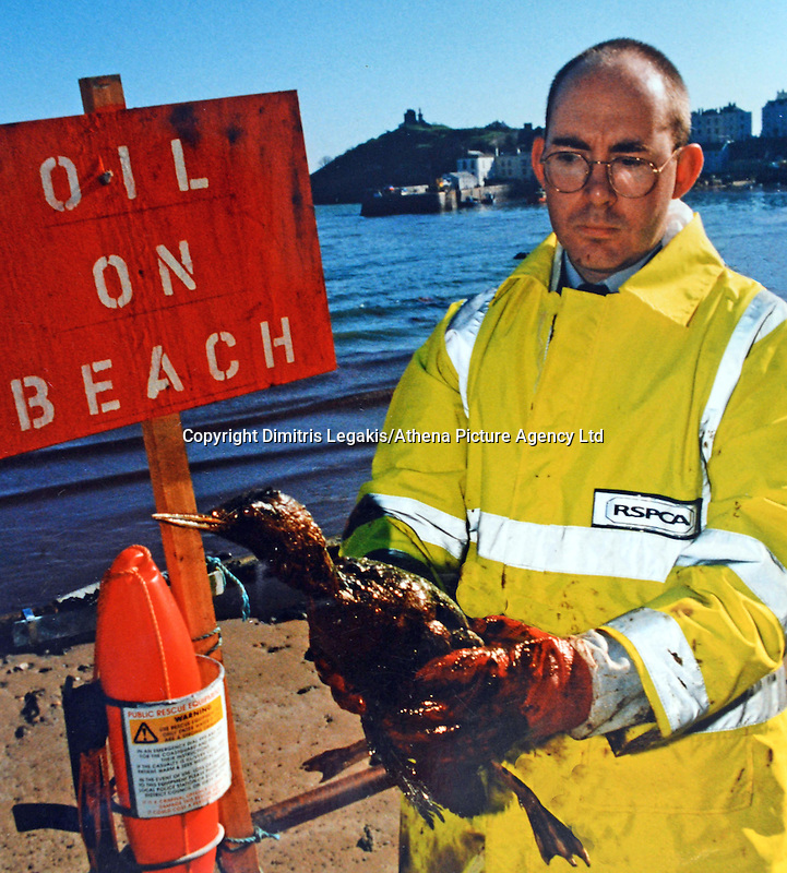 Pictured: An RSPCA worker tries to de-pollute one of the birds affected by the Sea Empress spill in Tenby, west Wales<br /> Re: The Sea Empress oil spill occurred at the entrance to the Milford Haven Waterway in Pembrokeshire, Wales on 15th February 1996 which was followed up by a clean up operation has begun