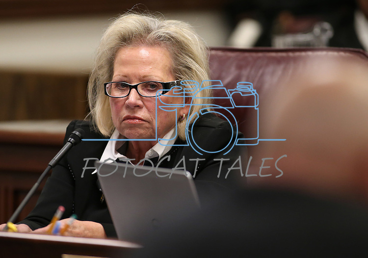 Nevada Assemblywoman Victoria Dooling, R-Henderson, works in committee at the Legislative Building in Carson City, Nev., on Monday, Feb. 23, 2015. <br /> Photo by Cathleen Allison